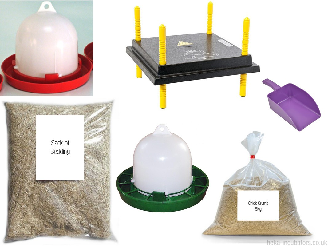 Duck/Chick Rehoming Kit with Warmplate