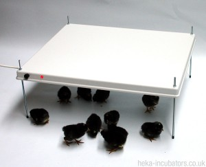 HEKA Poultry Brooder Warm Plate for 30-35 chicks